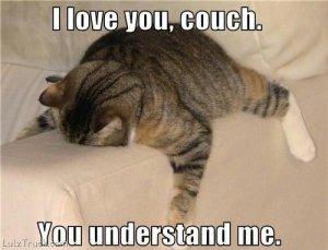 wpid-cat-couch-funny-gpoy-i-love-u-Favim.com-337054.jpg